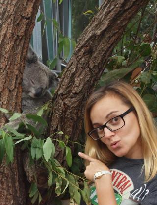 with koala in Sydney